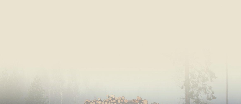 background-04.jpg